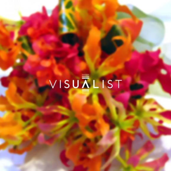 Visualist